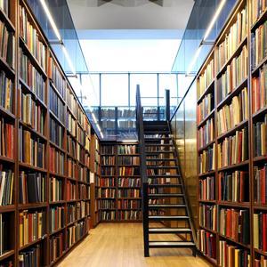 Библиотеки Бокситогорска
