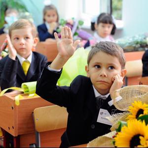Школы Бокситогорска